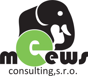 logo Meews consulting s.r.o.